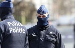 Cảnh sát Bỉ bắt giữ đối tượng nghi tuyển quân cho IS
