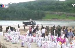 TT-Huế khẩn cấp xử lý sạt lở bờ biển Vinh Hải