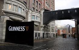 Nhà máy nấu bia Guiness – Nơi tái hiện niềm tự hào của người Ireland