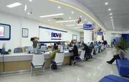 BIDV có thể lãi 6.900 tỷ đồng năm 2017, tăng trưởng tín dụng lên 17% trong 2 năm tới