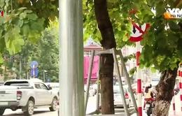 Nhiều biển báo giao thông tại Hà Nội có cũng như không