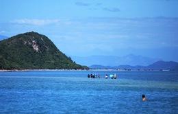 Khánh Hòa tìm mô hình mới để phát triển hệ sinh thái biển Rạn Trào