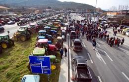 Nông dân Hy Lạp biểu tình phản đối tăng thuế và giảm lương hưu