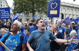 Hàng chục nghìn người xuống đường tuần hành tại London