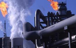 Big Oil cần chi 350 tỷ USD để phát triển năng lượng tái tạo