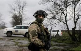 Lãnh đạo Pháp - Đức hối thúc Nga - Ukraine ủng hộ lệnh ngừng bắn