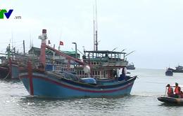 Bình Thuận cấm tàu thuyền ra biển, đề phòng bão số 16