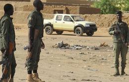 Mali tiêu diệt và bắt giữ gần 20 tay súng thánh chiến ở miền Trung