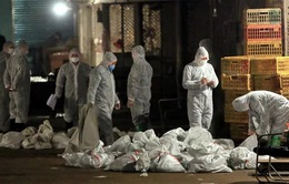 Trung Quốc tiêu hủy hàng tấn ma túy
