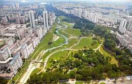 Bí quyết quy hoạch không gian xanh của Singapore