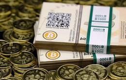 Đồng tiền ảo Bitcoin Cash tăng 200% giá trị sau khi phân tách