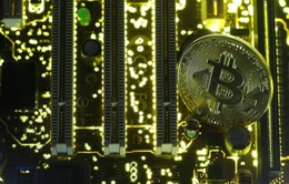 Morgan Stanley: Giá trị thực của Bitcoin có thể chỉ là số 0