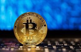 Giá Bitcoin tăng kỷ lục
