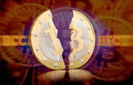 Nhà đầu tư trong nước thận trọng với Bitcoin Cash