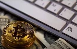 Công nghệ đào Bitcoin có thể làm chậm quá trình phát triển của nhân loại