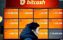 Hàn Quốc áp dụng quy định mới về tiền ảo