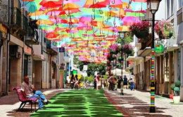 Thú vị con đường với những chiếc ô rực rỡ tại Bồ Đào Nha