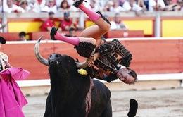 6 người bị thương trong lễ hội chạy đua với bò tót ở Tây Ban Nha