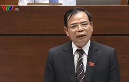 Bộ trưởng Bộ NN&PTNT nhận trách nhiệm về khủng hoảng thừa lợn