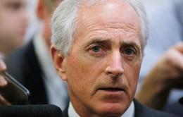 Thượng viện Mỹ từ chối áp đặt các biện pháp trừng phạt mới với Nga