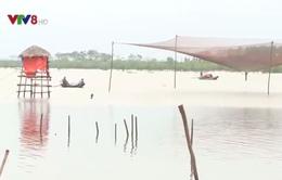 [ĐƯỜNG DÂY NÓNG VTV8]: Khúc mắc chi trả bồi thường sự cố môi trường biển ở Hà Tĩnh