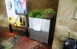 Bồn tiểu công cộng đầy hoa trên đường phố Paris, Pháp