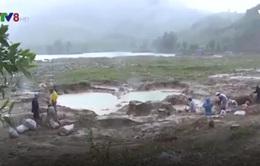 Mỏ vàng Bồng Miêu vẫn chưa đóng cửa