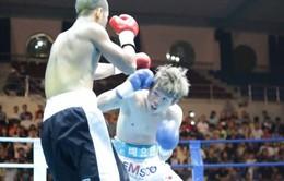 Gian nan con đường chuyên nghiệp của boxing Việt Nam