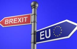 Anh chuẩn bị kịch bản nếu đàm phán Brexit bị đổ vỡ