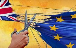 Chính thức kích hoạt Brexit, tương lai đang chờ đợi nước Anh?