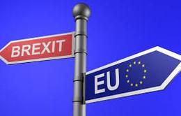 EU sẽ đoàn kết và cứng rắn trong đàm phán với Anh