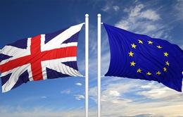 Giới siêu giàu Anh không bị ảnh hưởng bởi Brexit