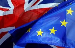 Tiến trình Brexit thử thách sức chịu đựng của cả Anh lẫn Liên minh châu Âu