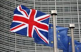 Chính phủ Anh cho phép Quốc hội bỏ phiếu thông qua Brexit