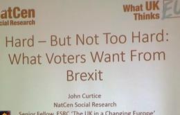 Người Anh phân vân giữa các lựa chọn Brexit