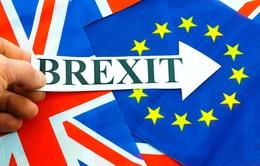 Người Anh tích trữ nhu yếu phẩm đề phòng Brexit