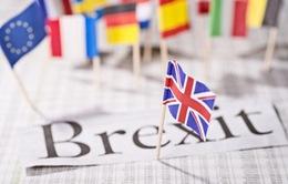 Chỉ có 29% người Anh tin tưởng Brexit sẽ tốt cho nền kinh tế