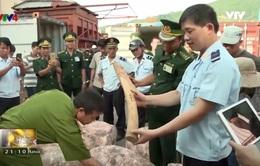 Việt Nam - Vương quốc Anh chung tay chống buôn bán động vật hoang dã
