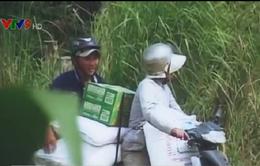 An Giang tăng cường chống buôn lậu mùa nước nổi