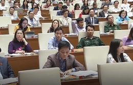 """Buôn lậu thuốc lá ở An Giang từ """"nóng giảm xuống ấm"""""""