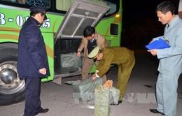 Quảng Ninh: Bắt giữ khối lượng lớn pháo nổ