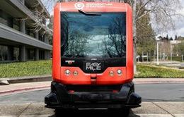 Thử nghiệm xe bus tự lái tại California (Mỹ)