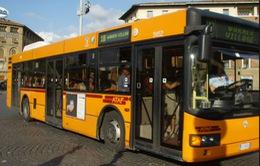 Đi xe bus giúp người già khỏe hơn