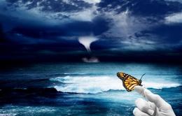 Hiệu ứng cánh bướm: 1 cái vỗ nhẹ cũng có thể thành bão
