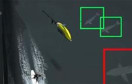 Australia sử dụng máy bay không người lái phát hiện cá mập