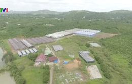 Cà Mau: Nhiều khu tái định cư cho người dân vùng sạt lở thiếu hạ tầng