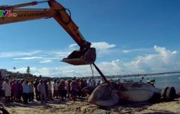 Ngư dân Bình Thuận mai táng cá ông nặng 13 tấn