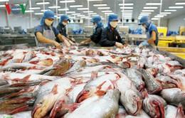 Sắp tổ chức hội chợ cá tra toàn quốc tại Hà Nội