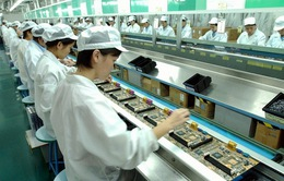 Kiên quyết rút giấy phép các DN yếu kém, lành mạnh hóa thị trường xuất khẩu lao động