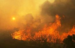Cháy lớn bùng phát tại California, Mỹ, hàng nghìn người phải sơ tán